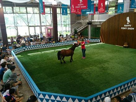 Ponyshow_2
