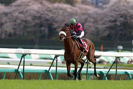 Matsurida