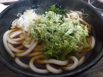 Hayakawa3
